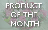 Chambers Florists Product of the month